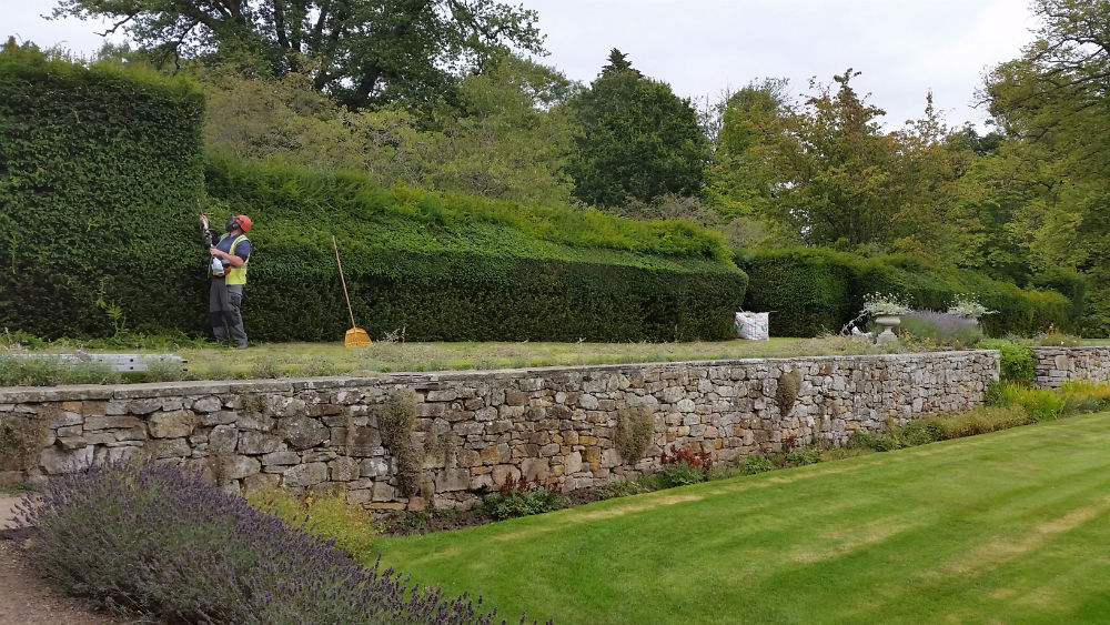 Landscaping Grounds Maintenance Edinburgh-24