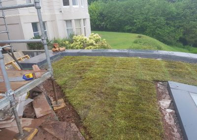 Green Roofs Edinburgh Scotland 03