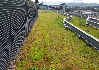 Green Roofs Edinburgh Scotland 10
