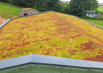 Green Roofs Edinburgh Scotland 20